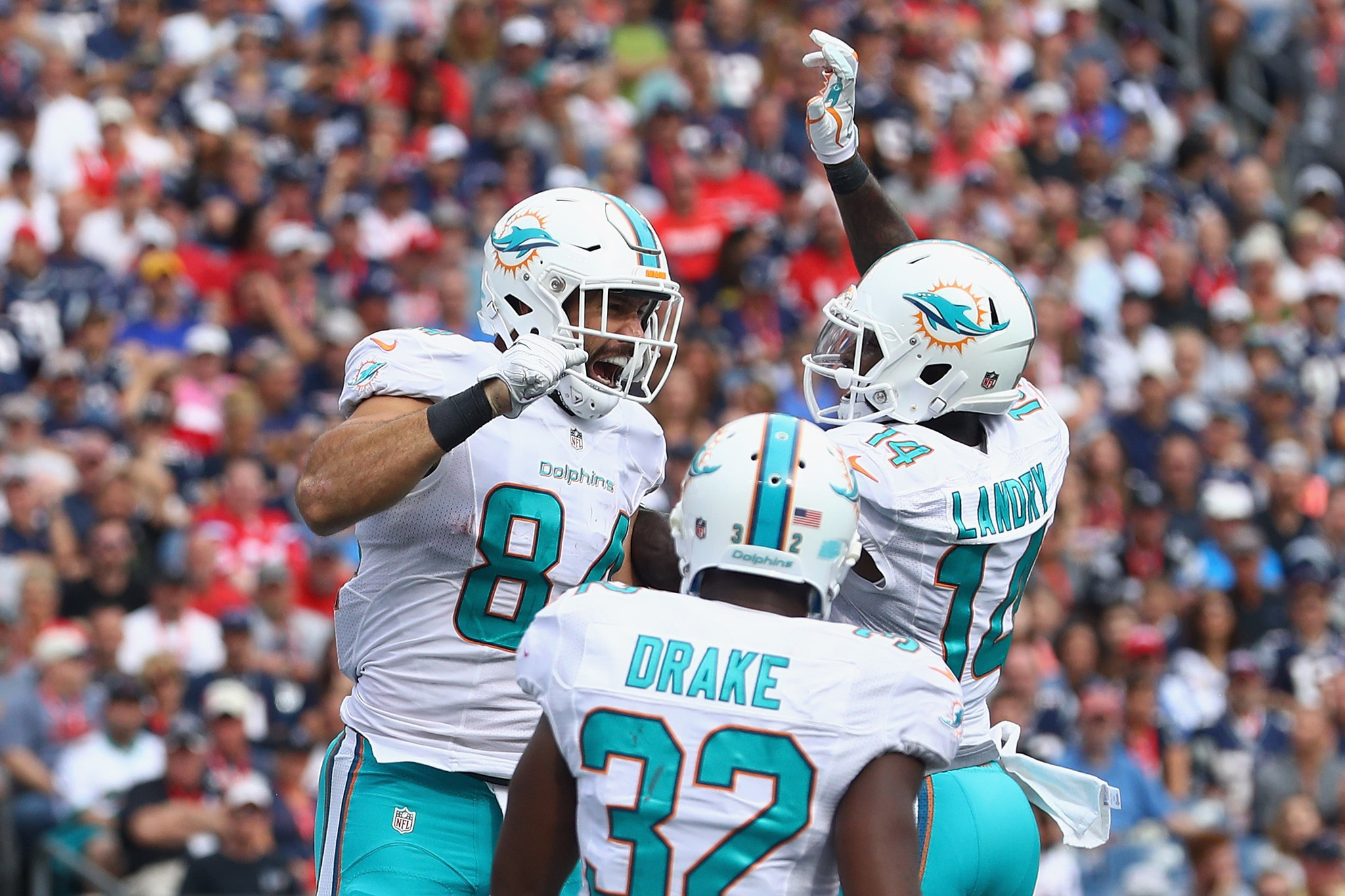 Fl-dolphins-notes-0923-20160922