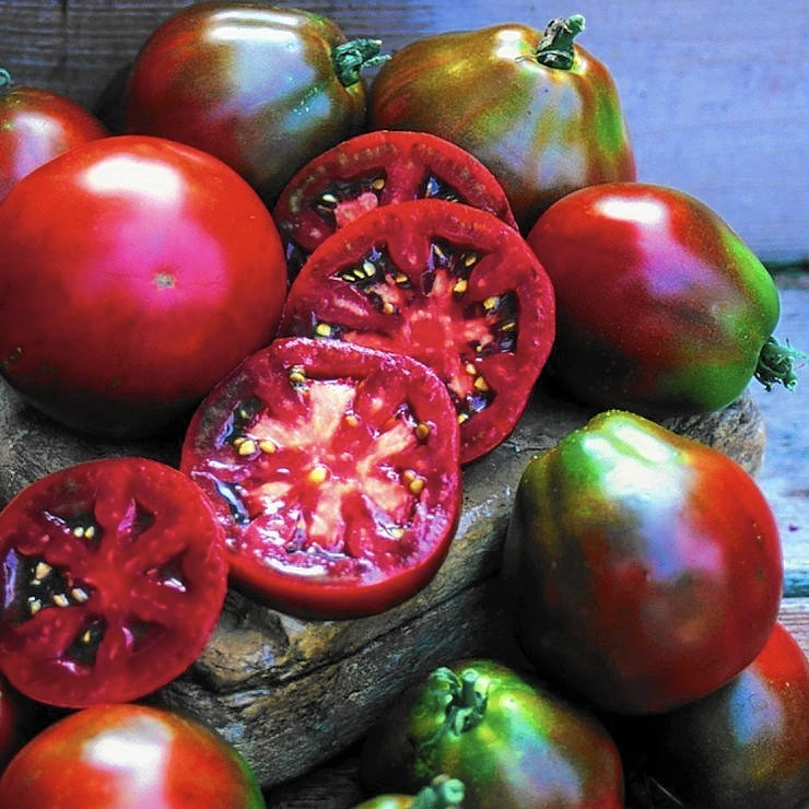 How to save, plant (and swap) your tomato seeds
