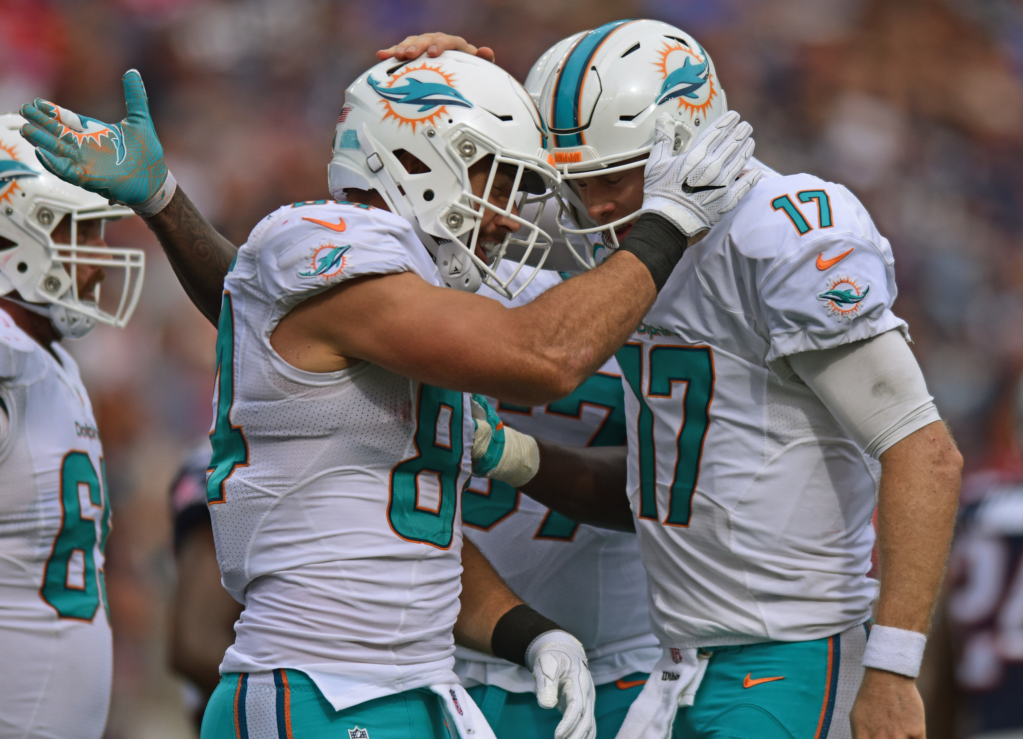 Fl-dolphins-advance-0925-20160924