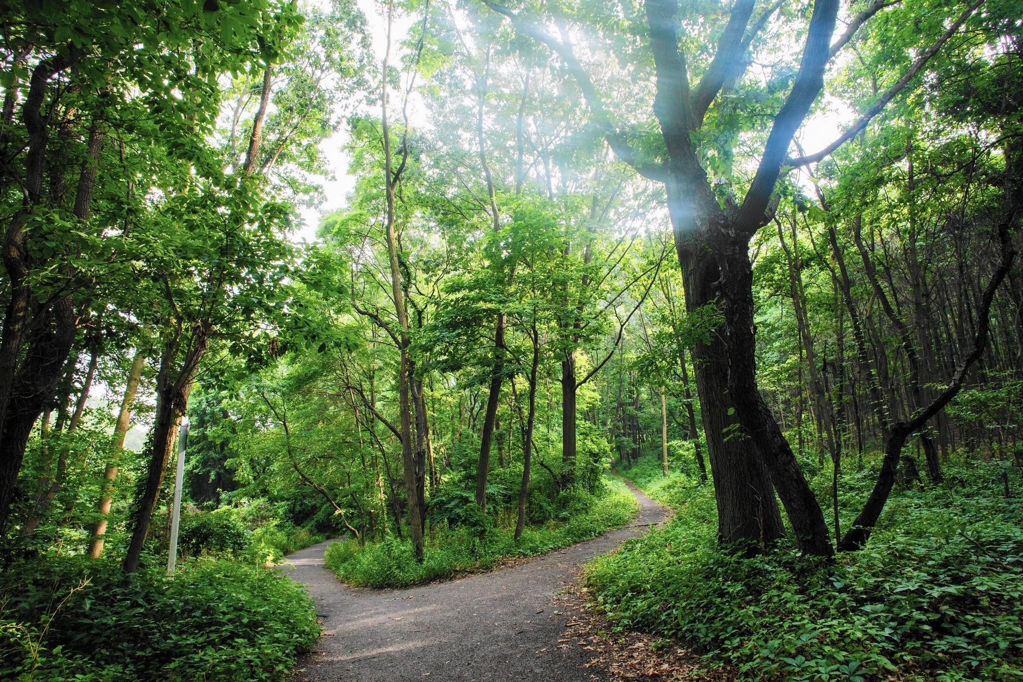 A serene spot in the Bronx: Van Cortlandt Park - The Morning Call