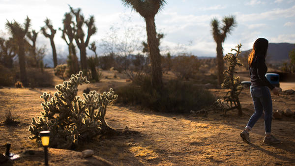 A rock fest has Joshua Tree up in arms