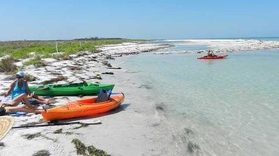Caladesi State Park: Best way to visit one of state's top beaches is by kayak