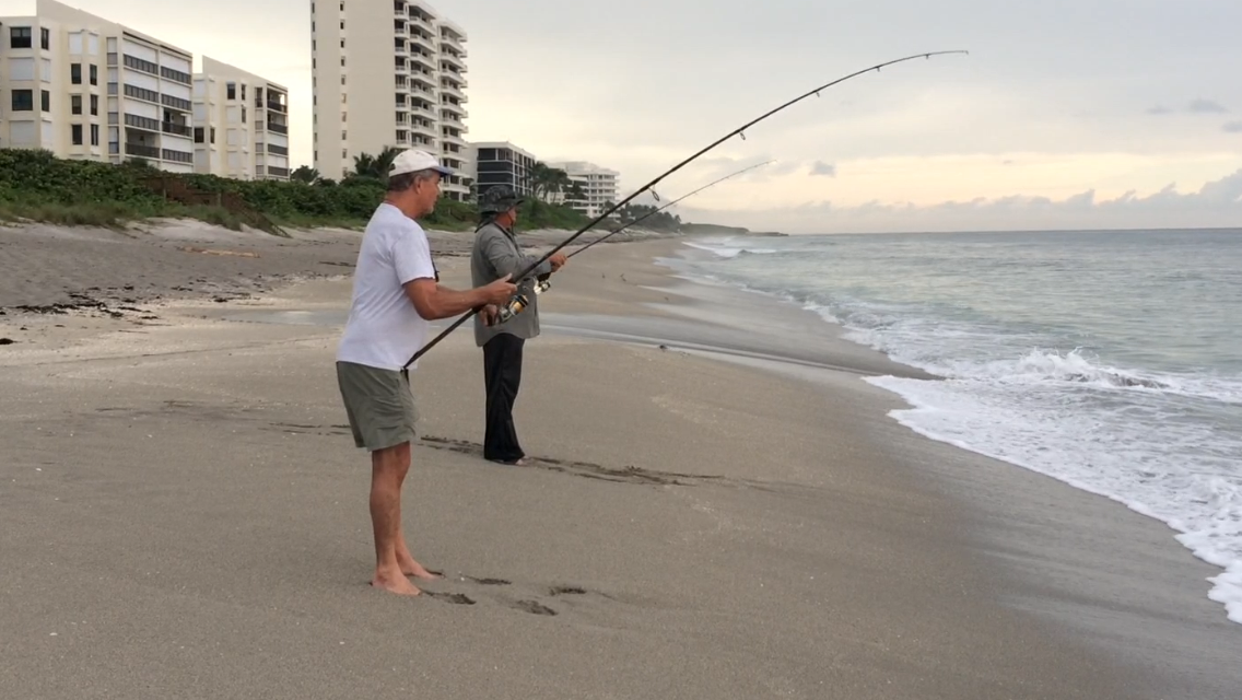 Fishing the fall mullet run carroll county times for Mullet fish florida