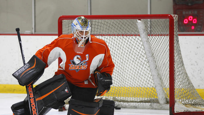 AHL: Gulls Preparing For Year Two