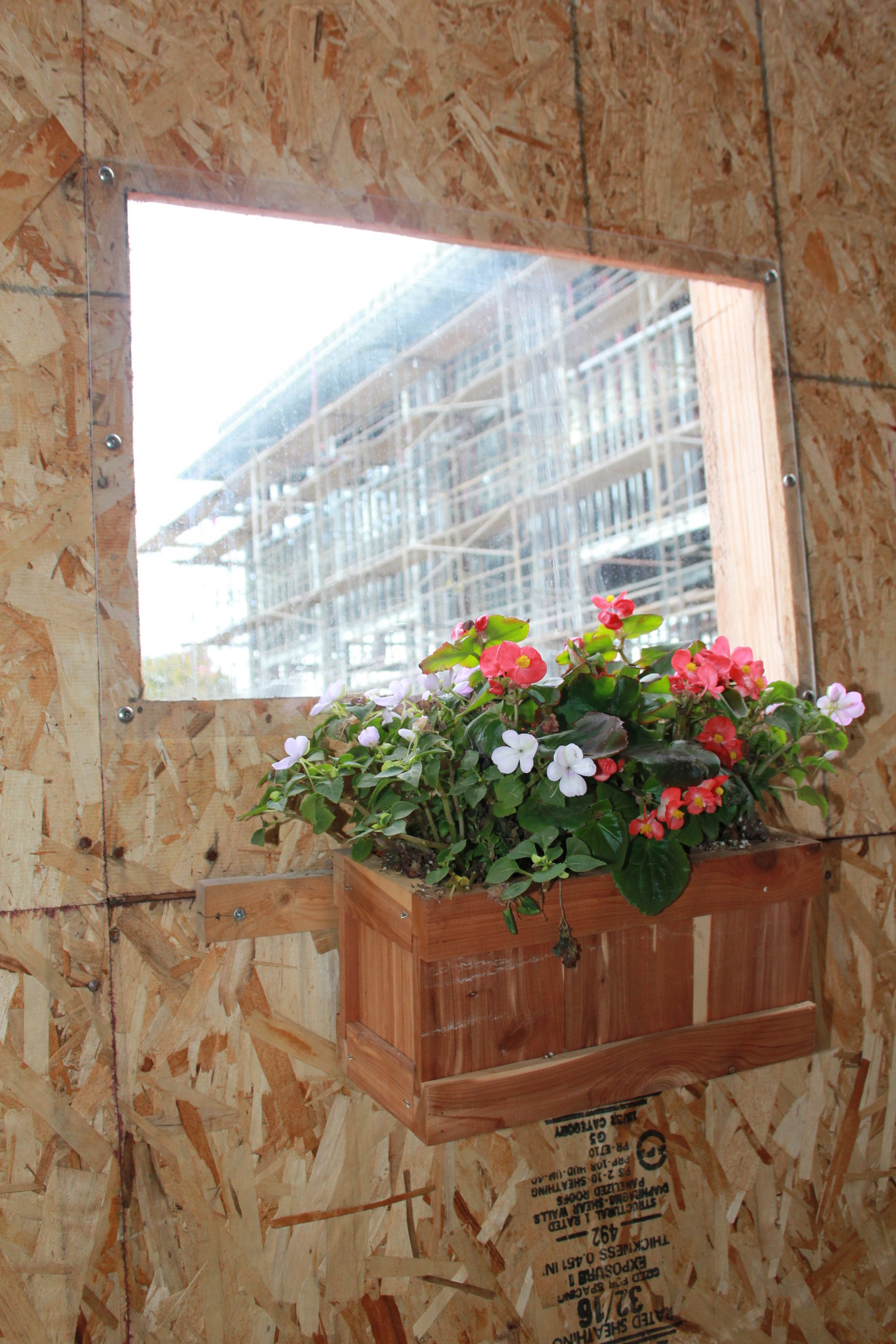 San Dieguito students added a flower box to a window in the construction wall.
