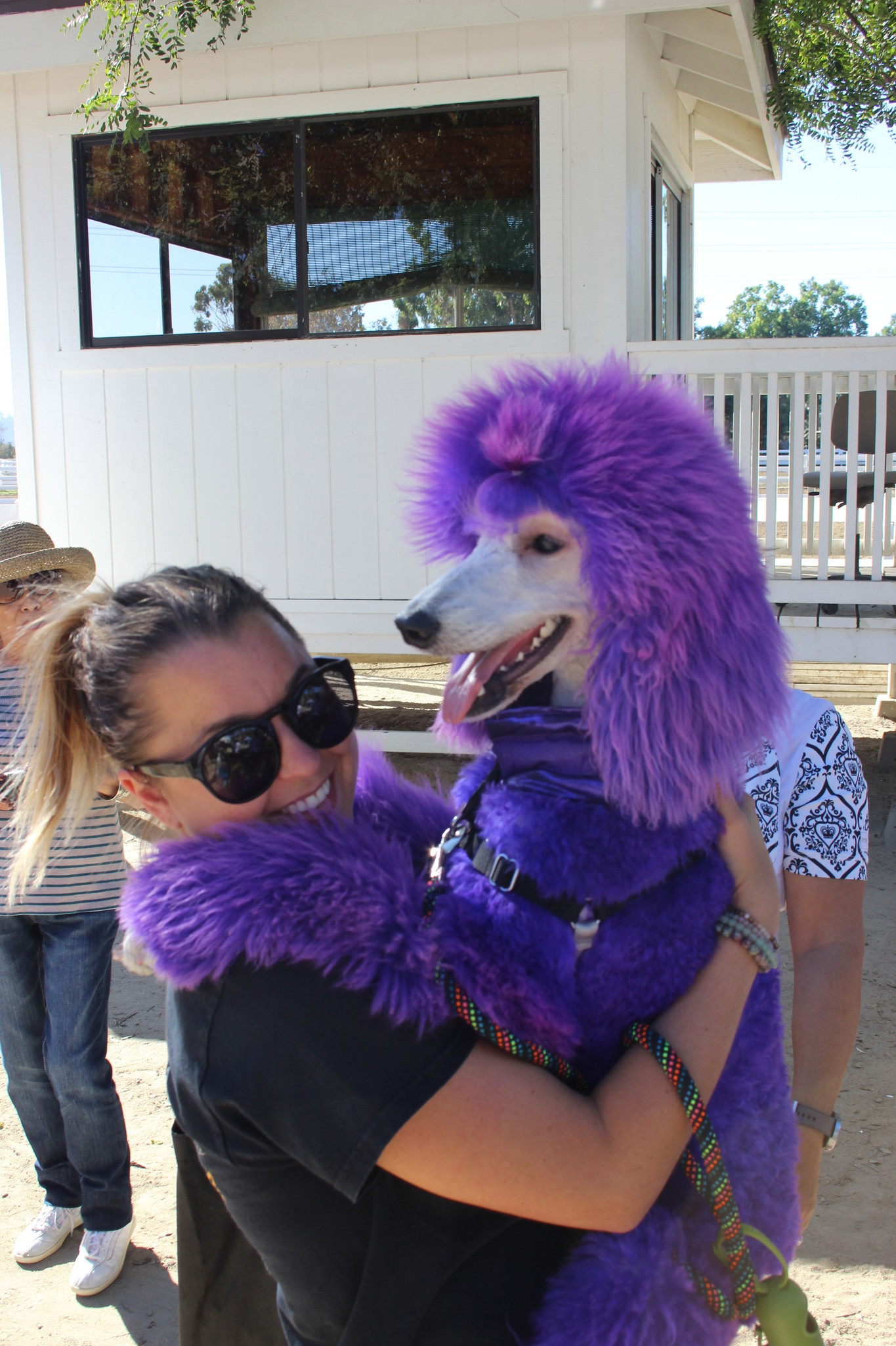 Casey Blatt and Mia at the 2015 Spooktacular dog costume contest.