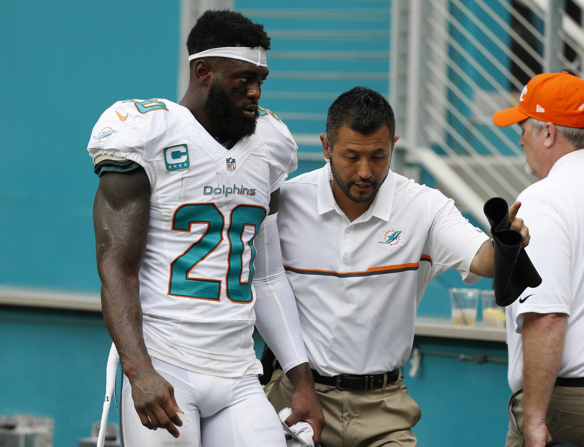 Fl-dolphins-notes-1013-20161012
