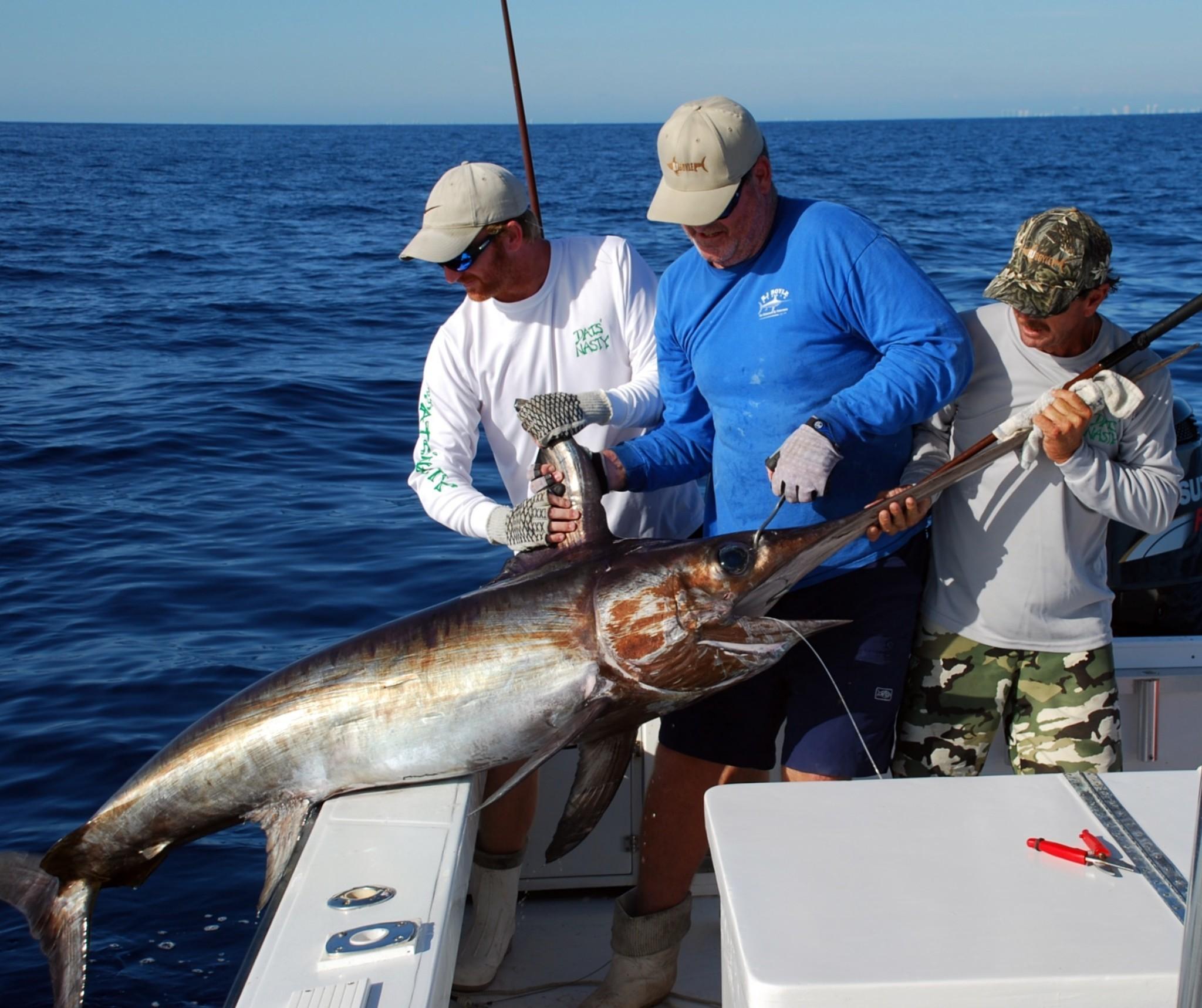 how to catch swordfish australia