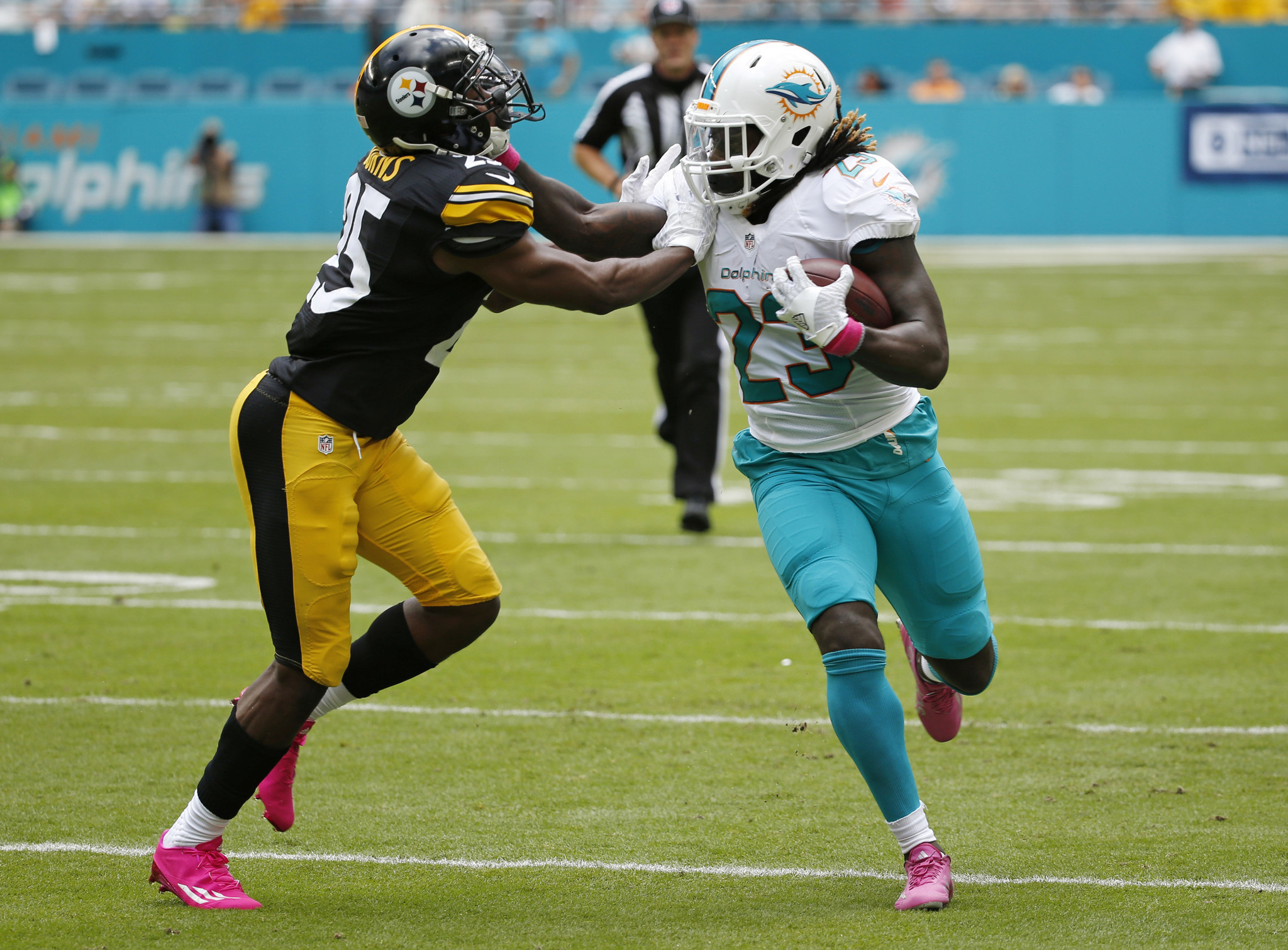 Fl-dolphins-notes-1020-20161019