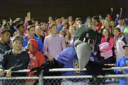 Ravens Poe mascot in stands at a RISE game