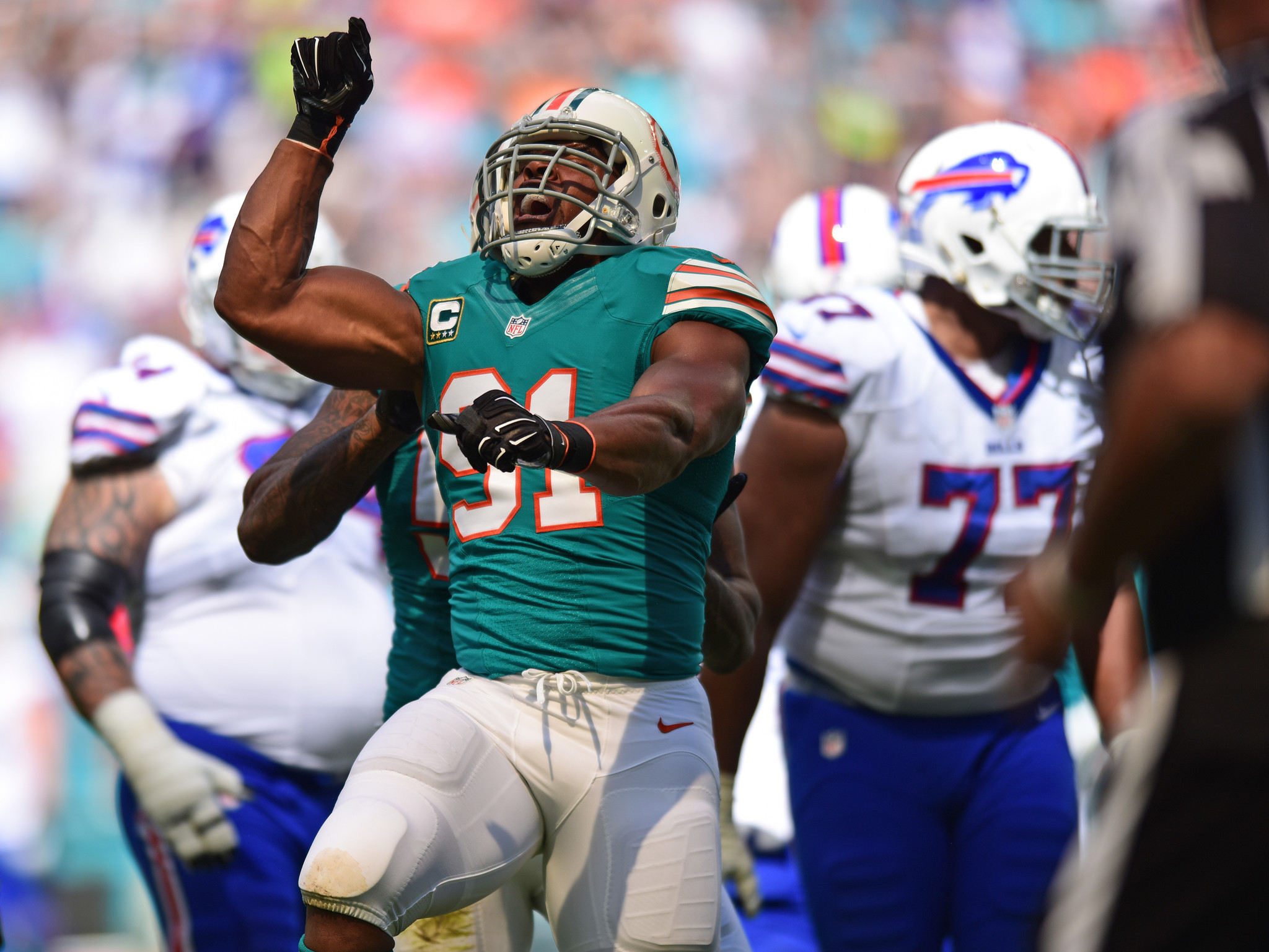 Fl-dolphins-notes-1024-20161023