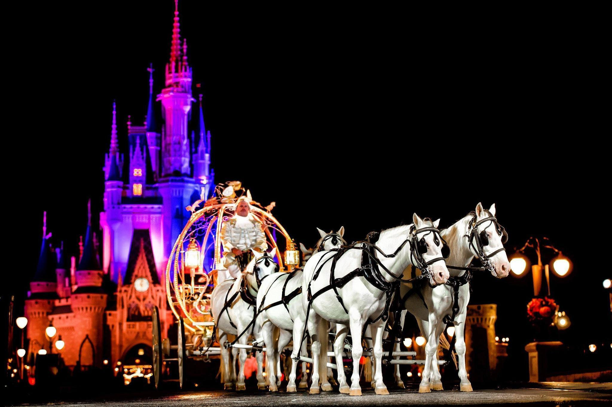 Weddings at disney parks and resorts - Weddings At Disney Parks And Resorts 34