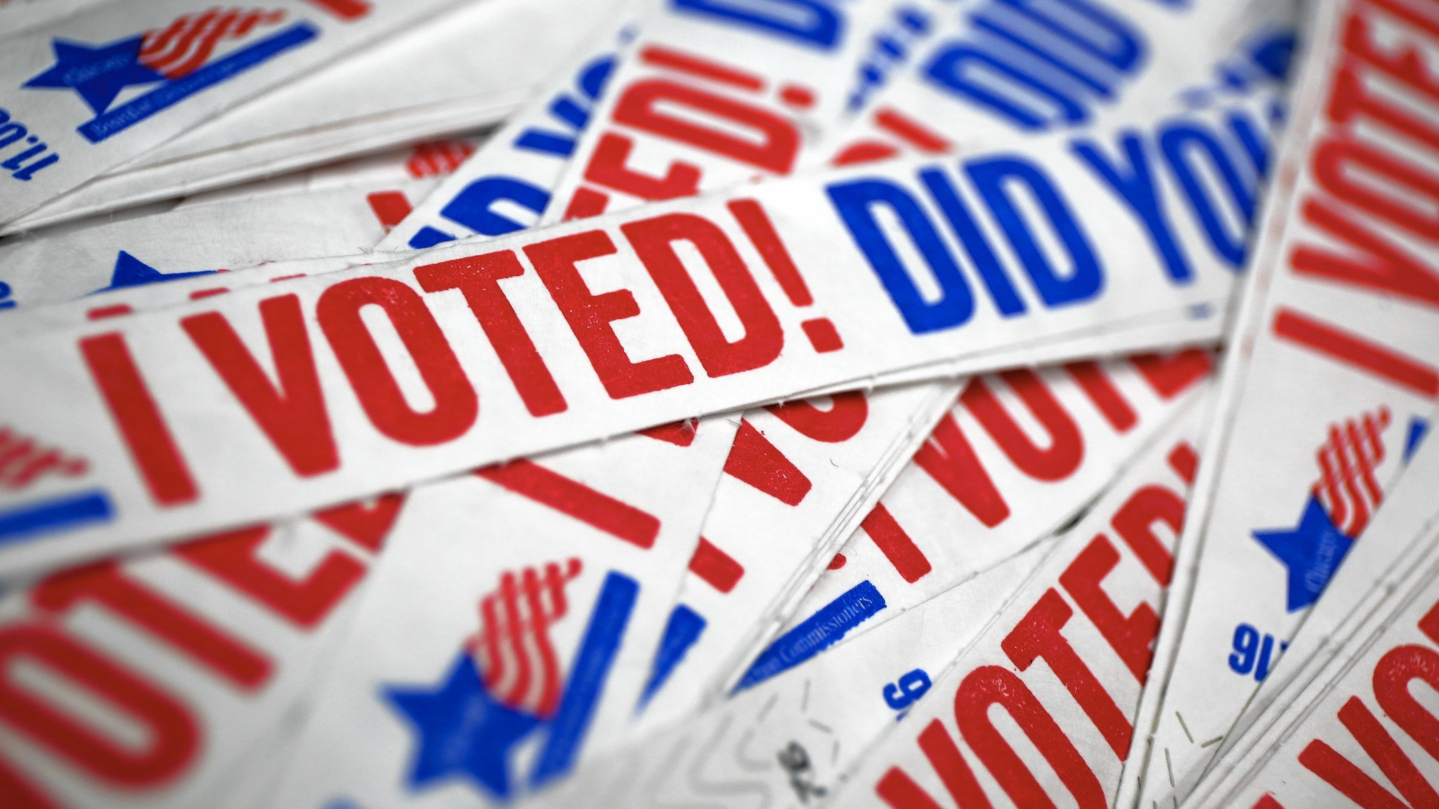 Image result for voting while stupid images