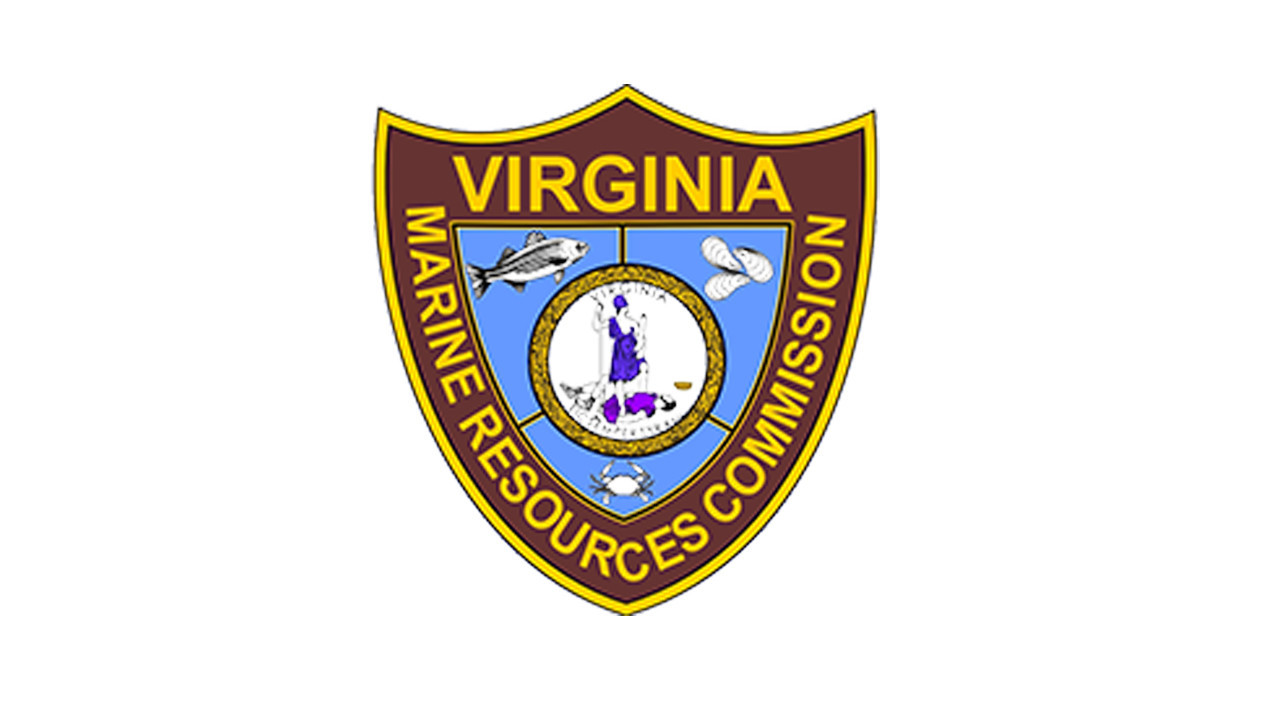 Vmrc revokes seven commercial fishing licenses at meeting for Virginia saltwater fishing regulations