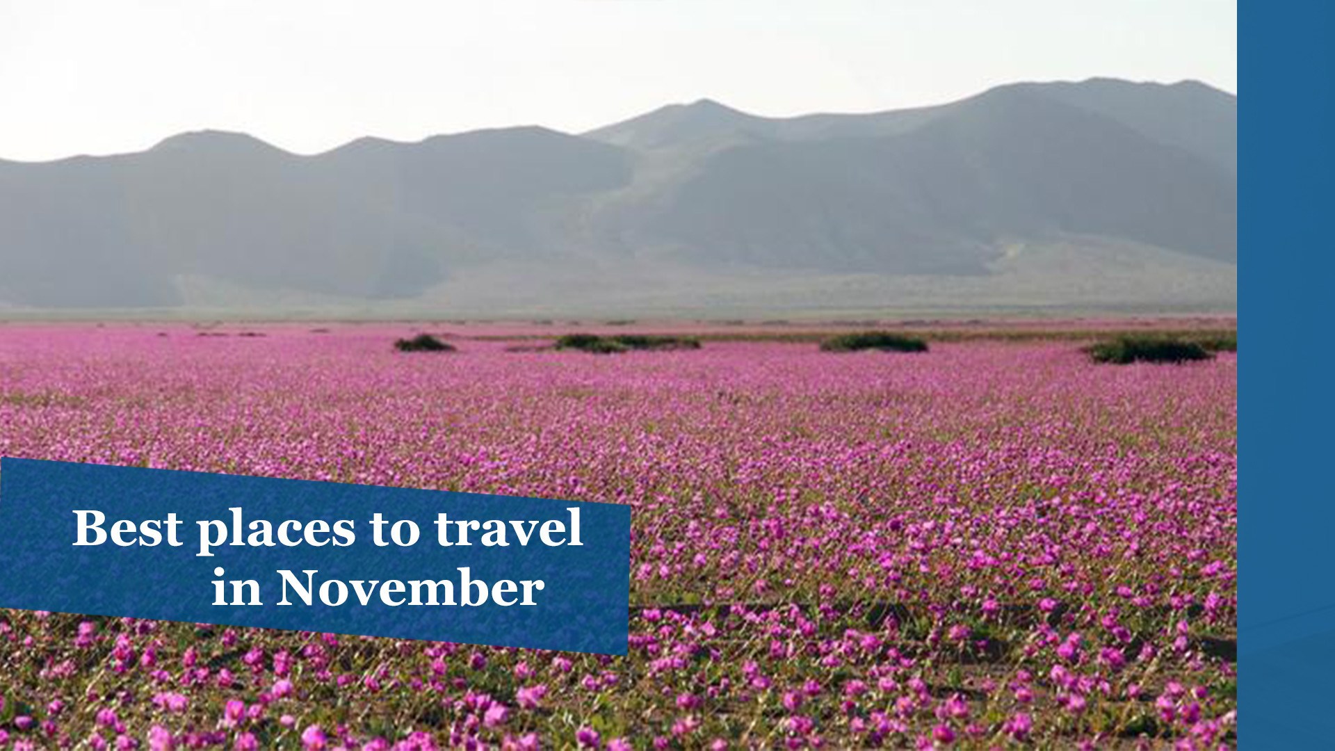 the best places to travel in november chicago tribune
