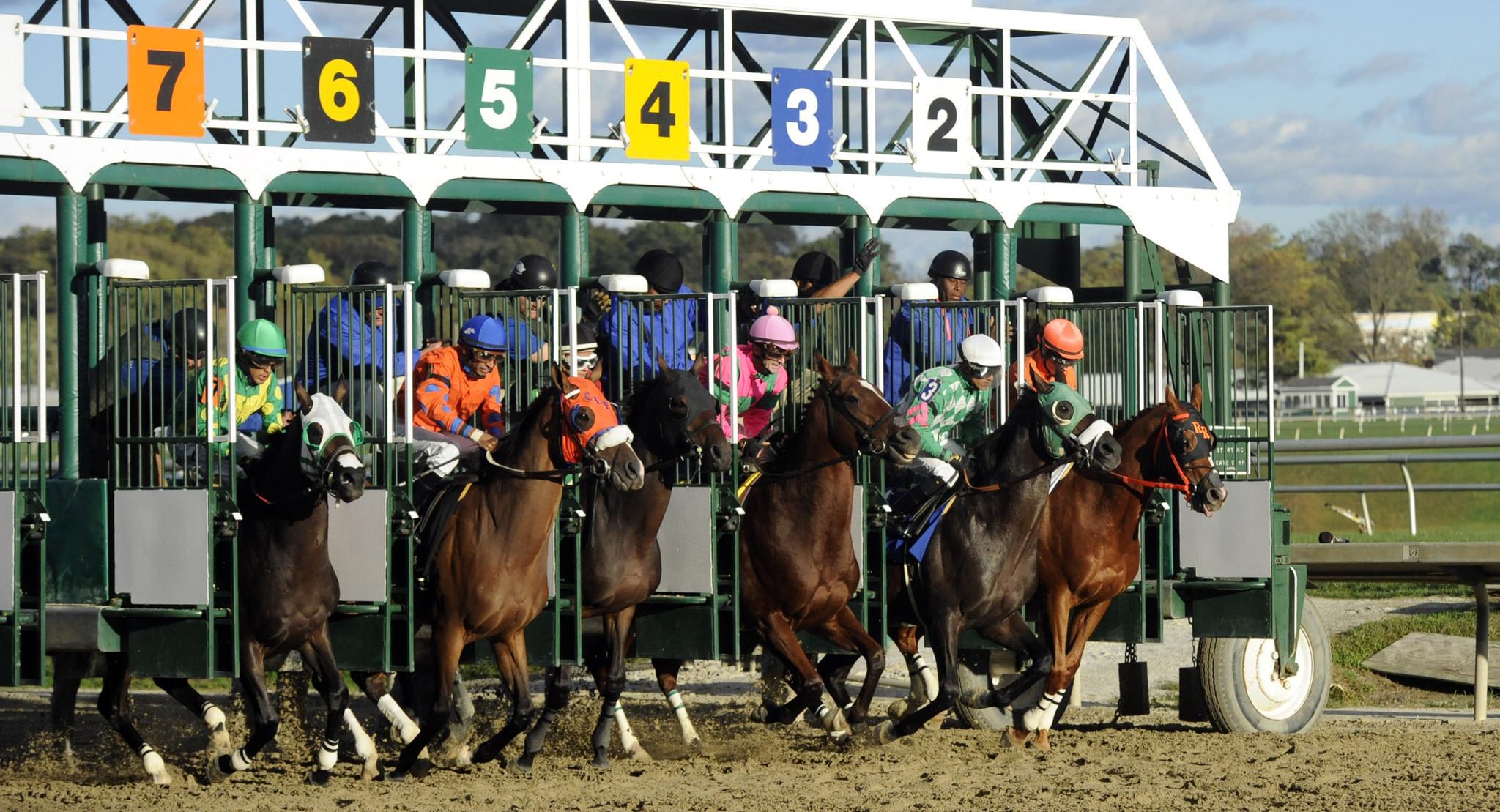 laurel racing