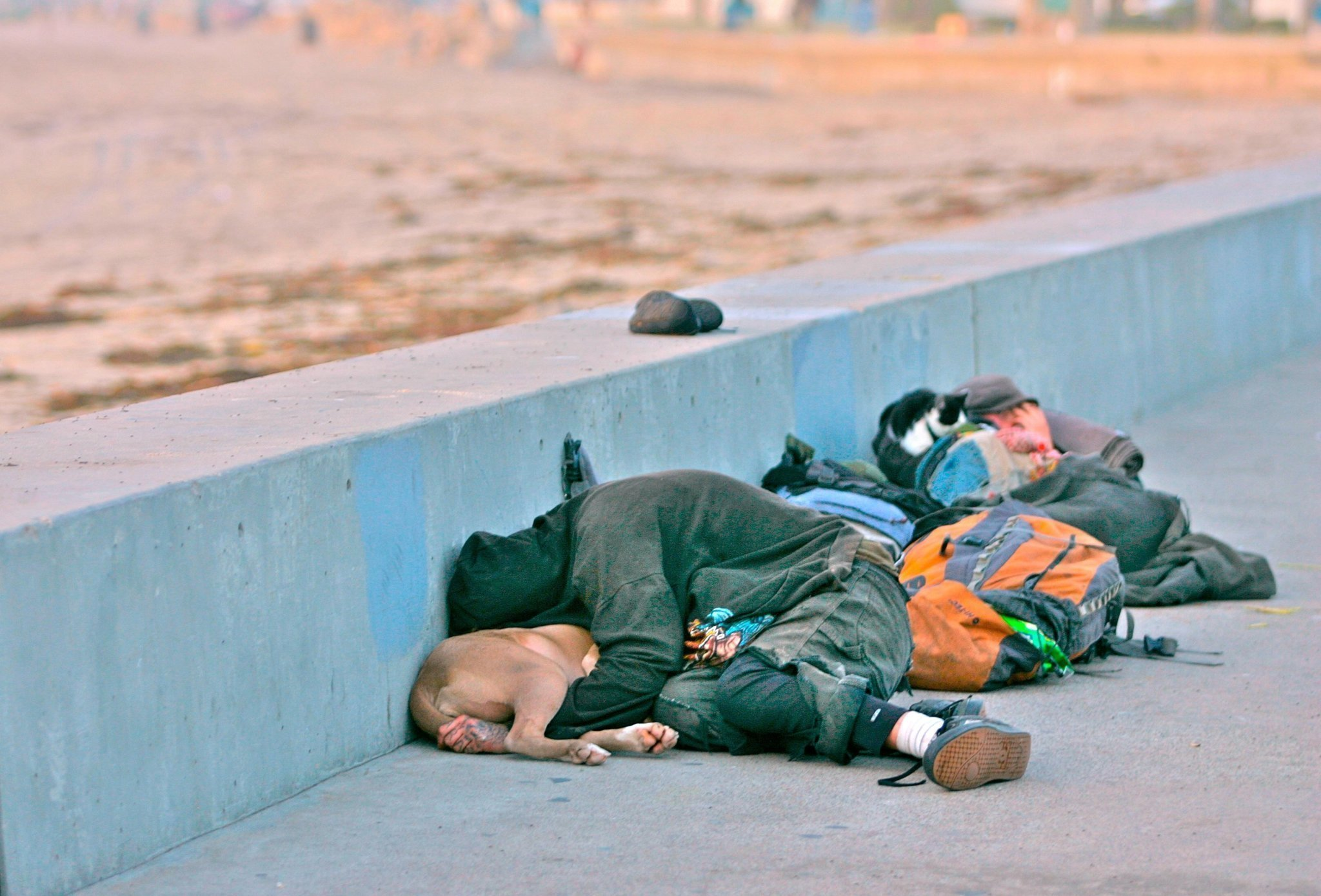 homelessness is rising The number of homeless people across the country increased for the first time this year since the depths of the recession, an increase tied to rising rents in states.