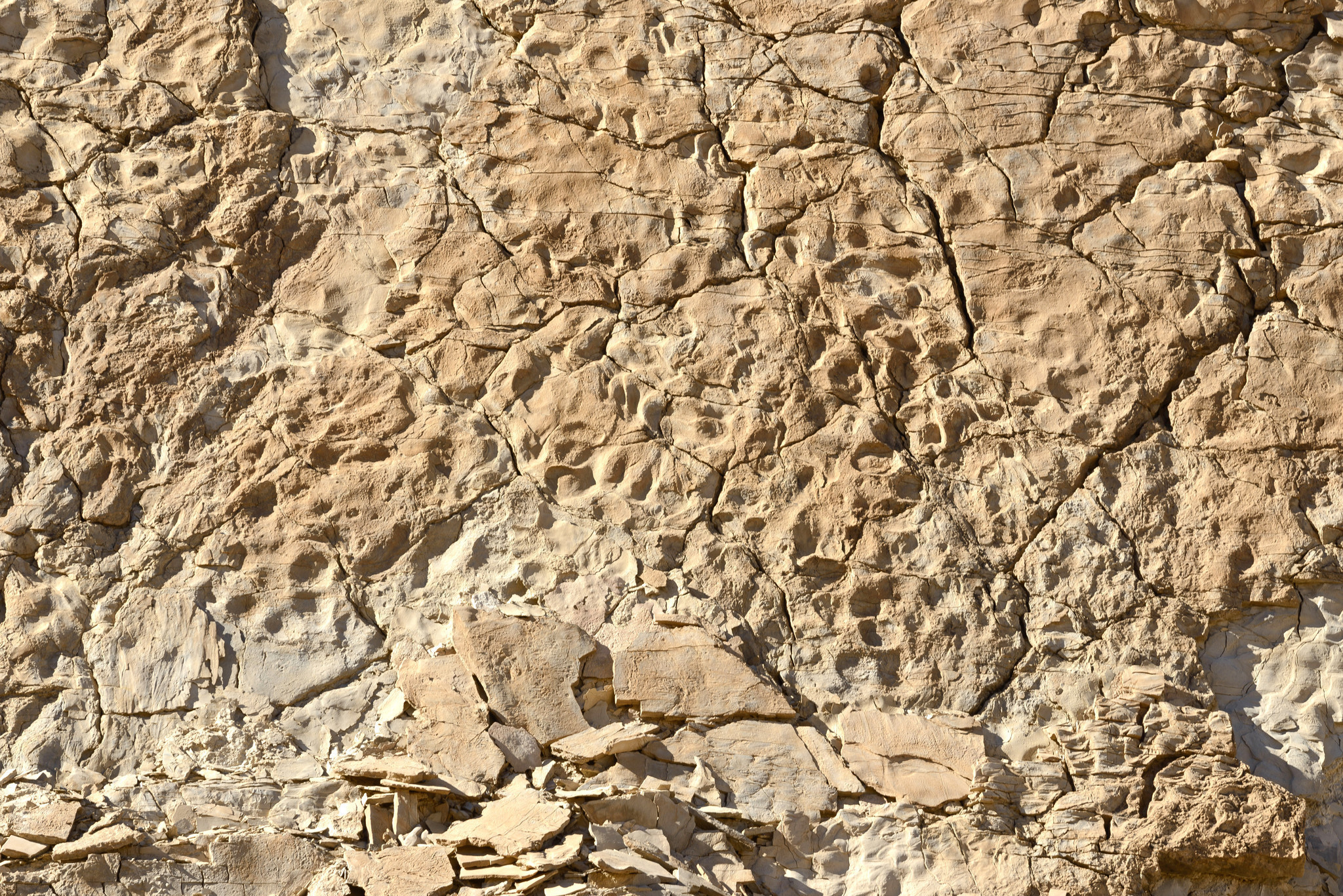 ancient beasts roamed this secret spot in death valley but you