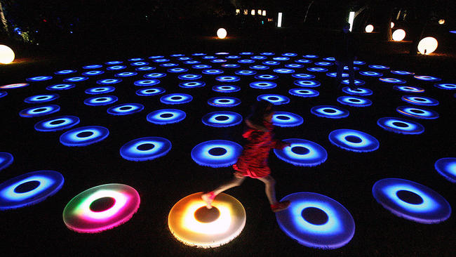 Photo Gallery: Descanso Garden's Enchanted: Forest of Light!