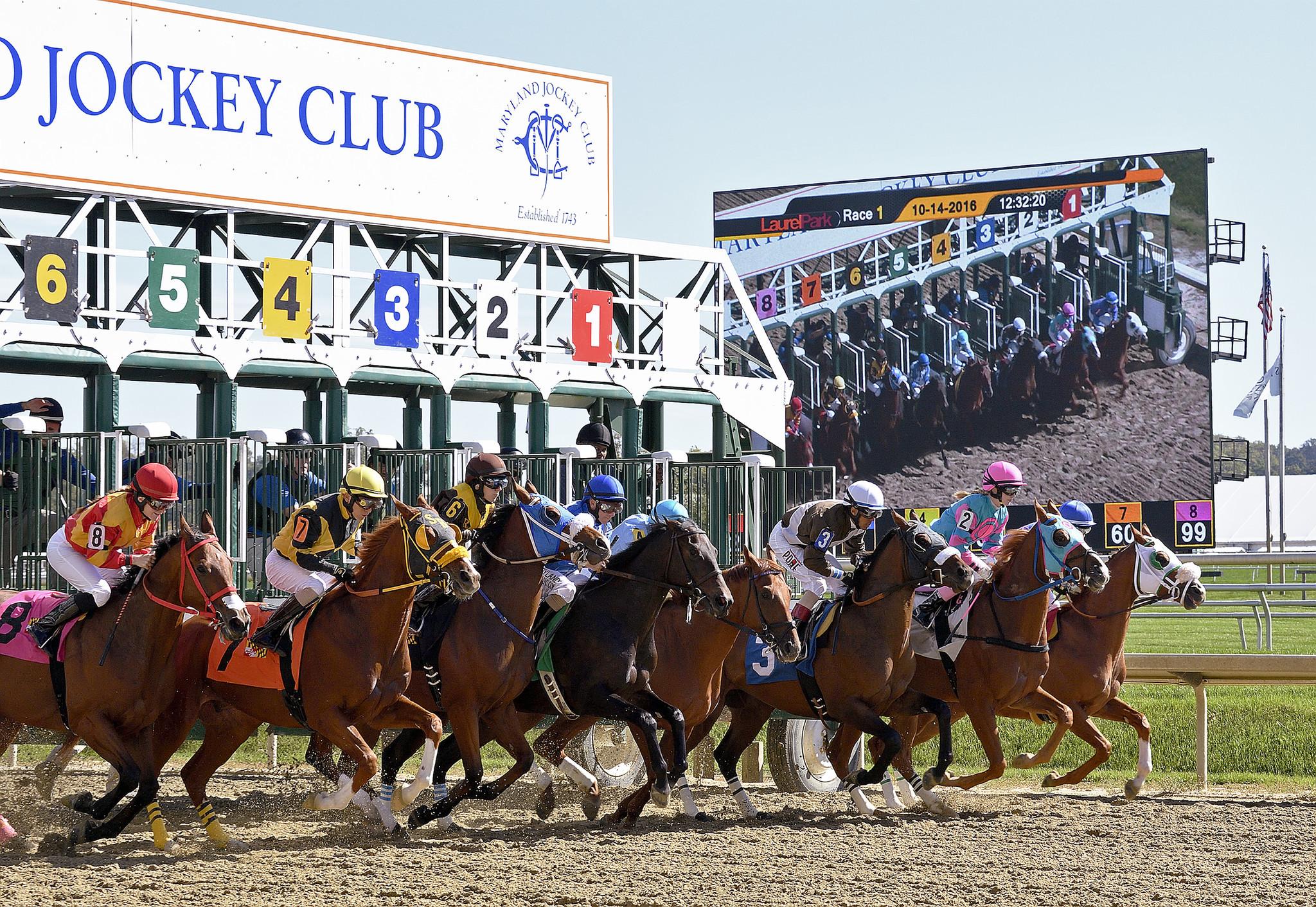 bal-thanksgiving-horse-racing-betting-ti