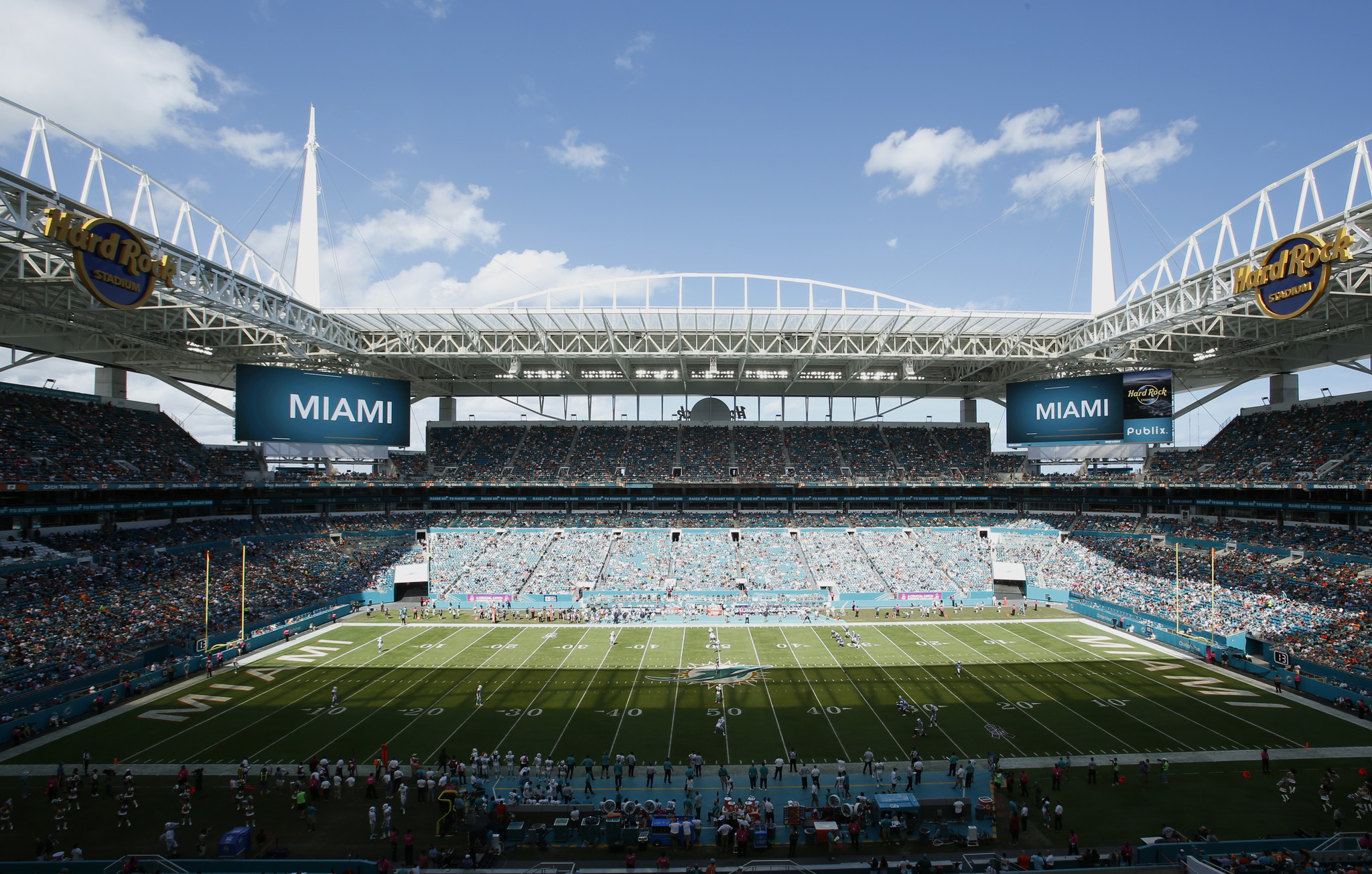 Fl-dolphins-preview-box-1127-20161126