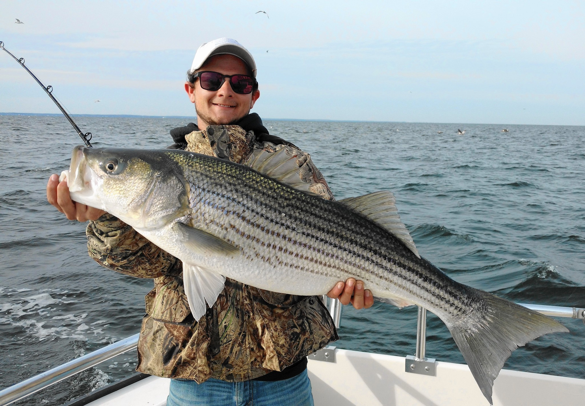 Mouth of potomac hot spot for rockfish baltimore sun for Potomac river fishing spots