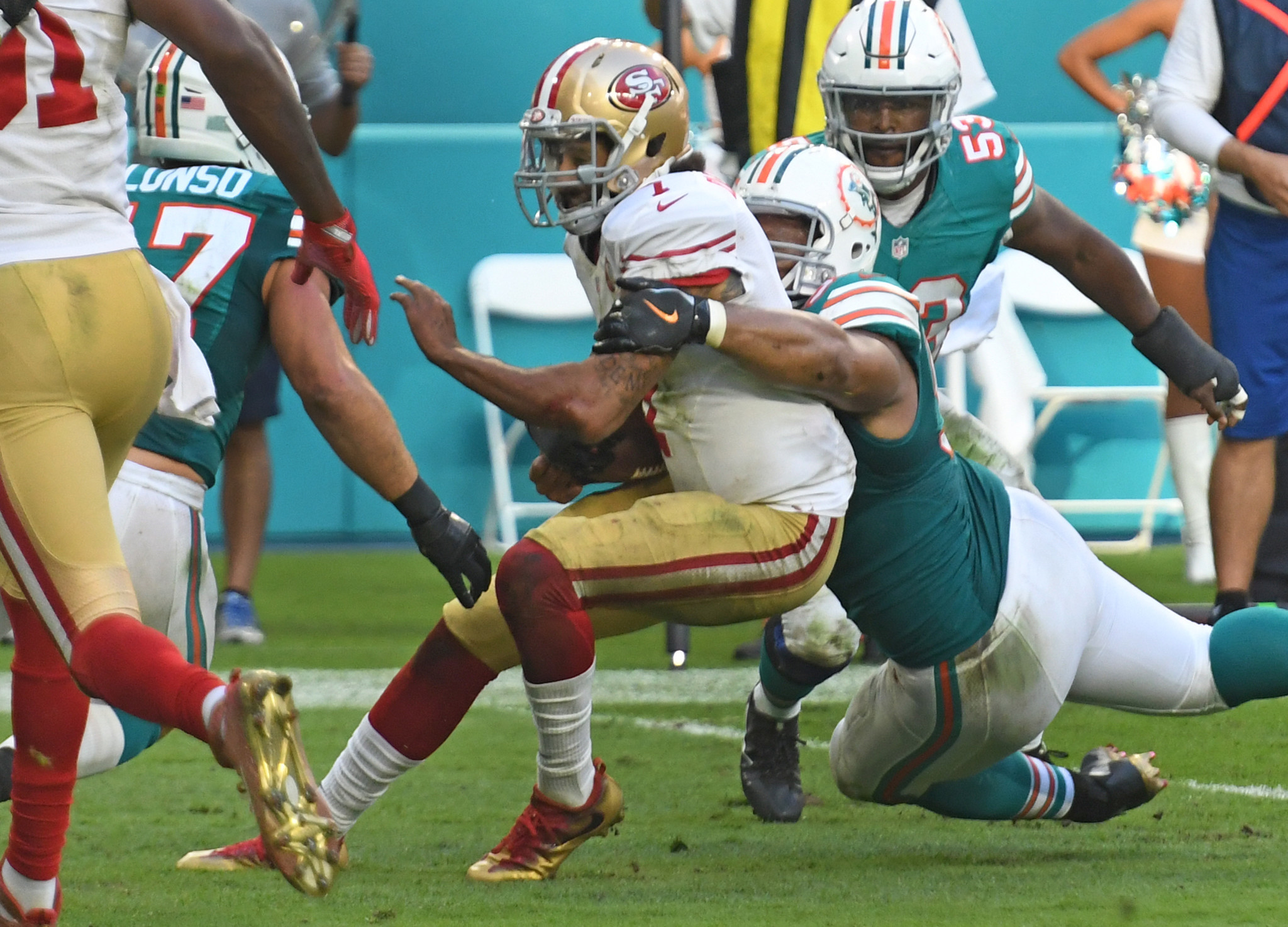 Fl-dolphins-1202-20161201