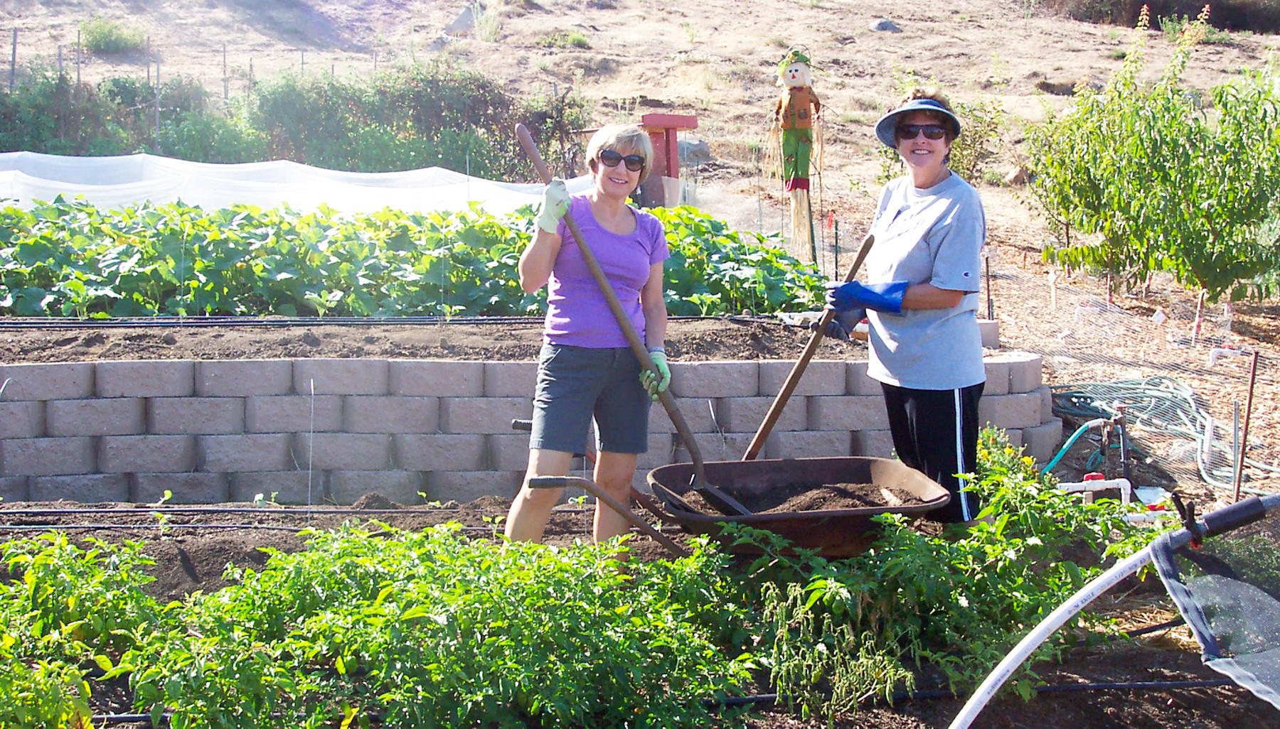 backyard produce project reaches 100 ton mark pomerado news