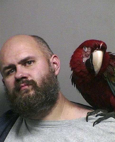 Macaw poses in Oregon man's mug shot after unlucky court appearance