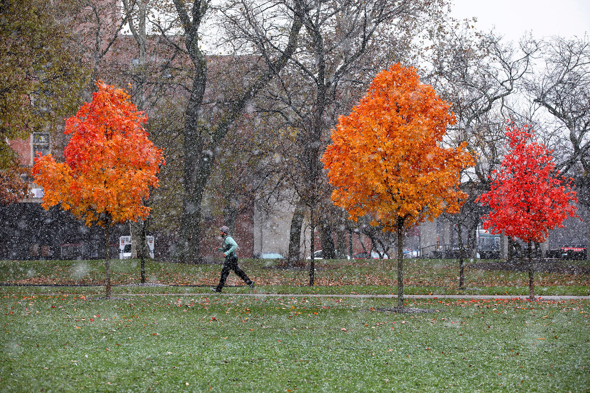 When Chicagos First Snow Falls Chicago Tribune - First snow map us
