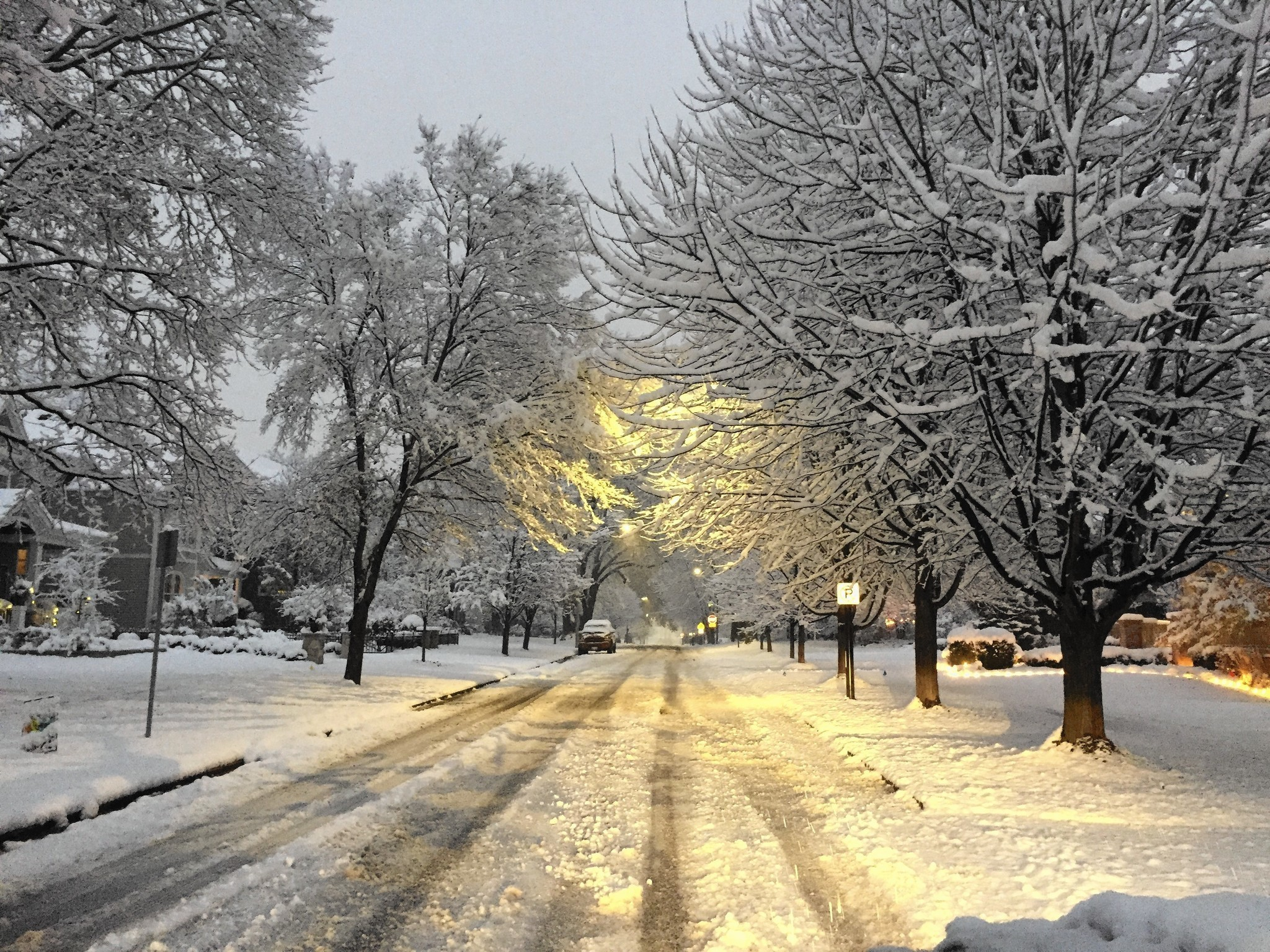 First Snow Transforms Naperville