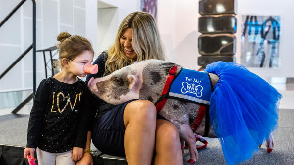 This little piggy is cheering up passengers at San Francisco's airport