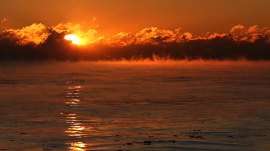 Arctic sea fog