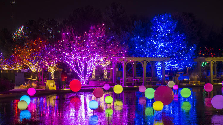 Blossoms of Light at the Denver Botanic Gardens. Glowing LED orbs in the Monet Pool.