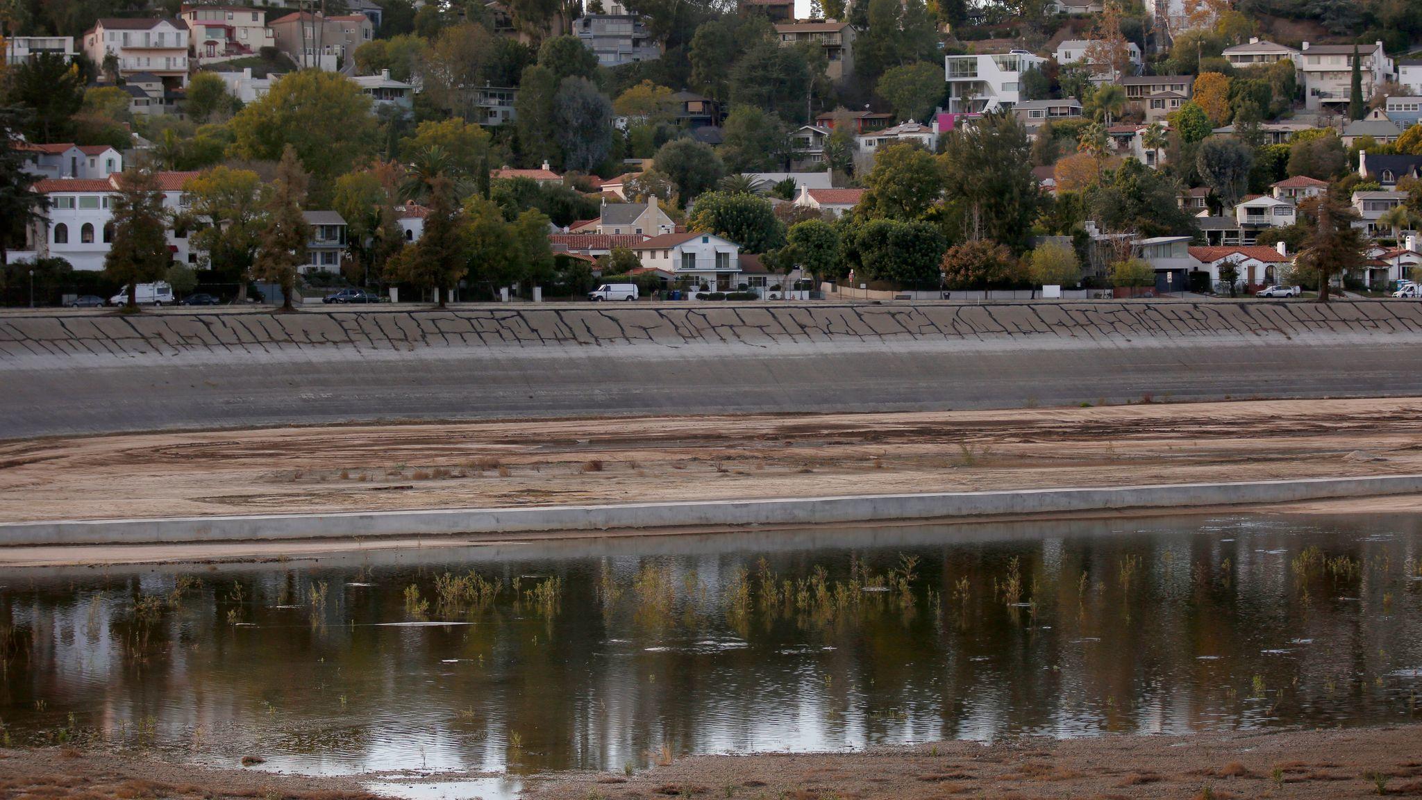 T L A S Silver Lake Dog Park