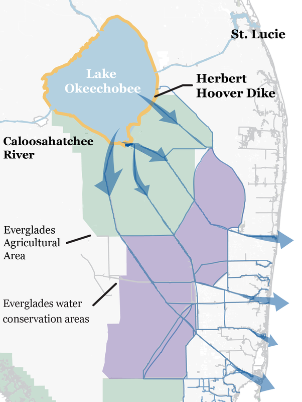How Lake Okeechobee flooding is adversely affecting Floridas coast