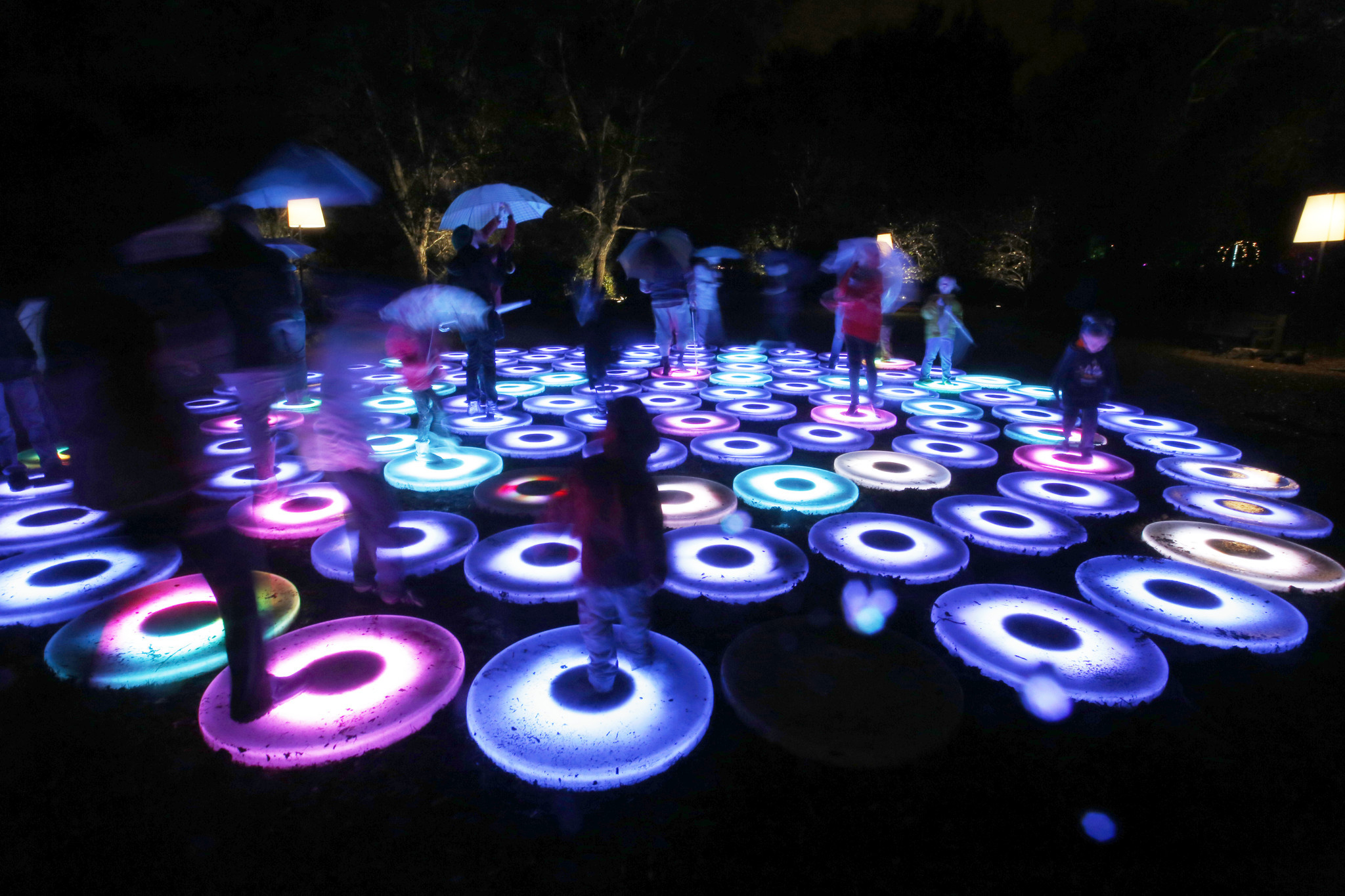 Descanso gardens 39 39 enchanted forest of light 39 la times - Descanso gardens enchanted forest of light ...