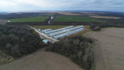 Plan for 20,000-hog facility sparks revolt in western Illinois