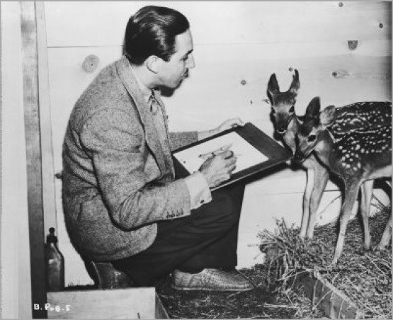 Walt Disney drawing a fawn.
