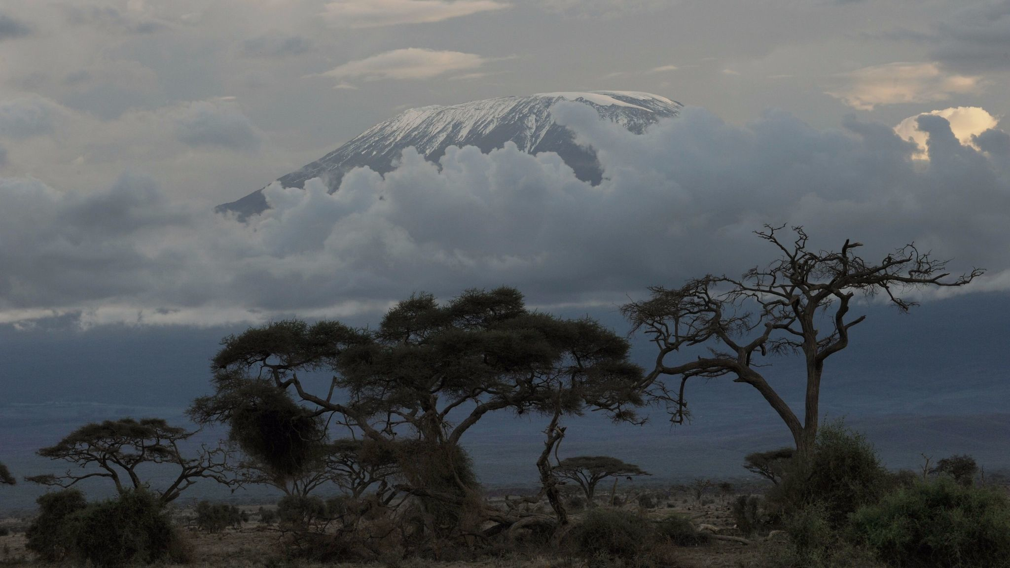 Africa's highest mountain, Mt. Kilimanjaro, is seen above clouds in late afternoon.