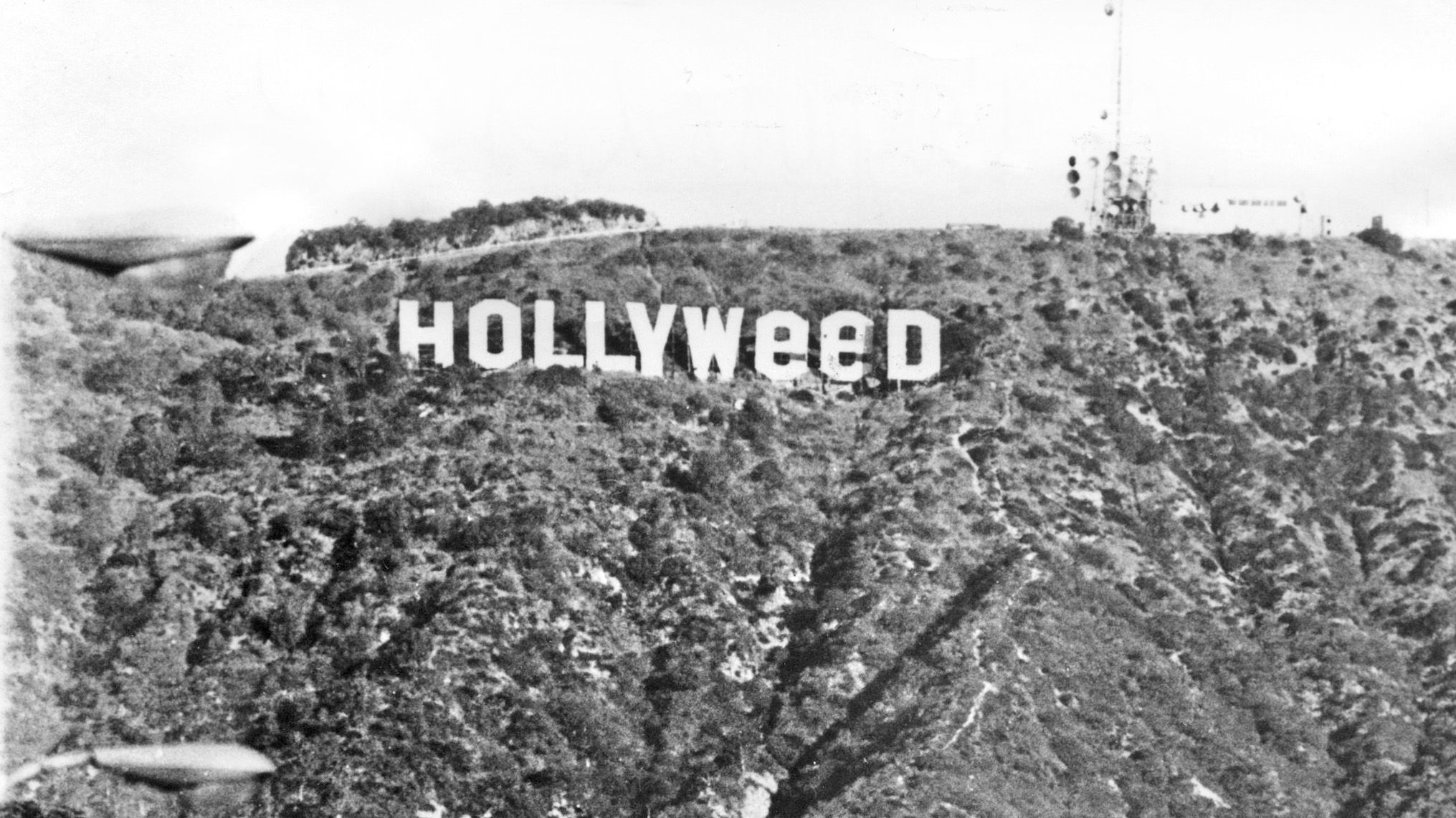 "The Hollywood sign's first iternation as ""Hollyweed"" was 41 years ago, on New Year's Day 1976, when an art student scaled the peak for a class project."