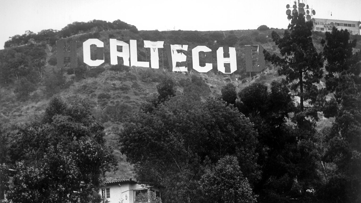 Hollywood Sign Altered To Read Hollyweed