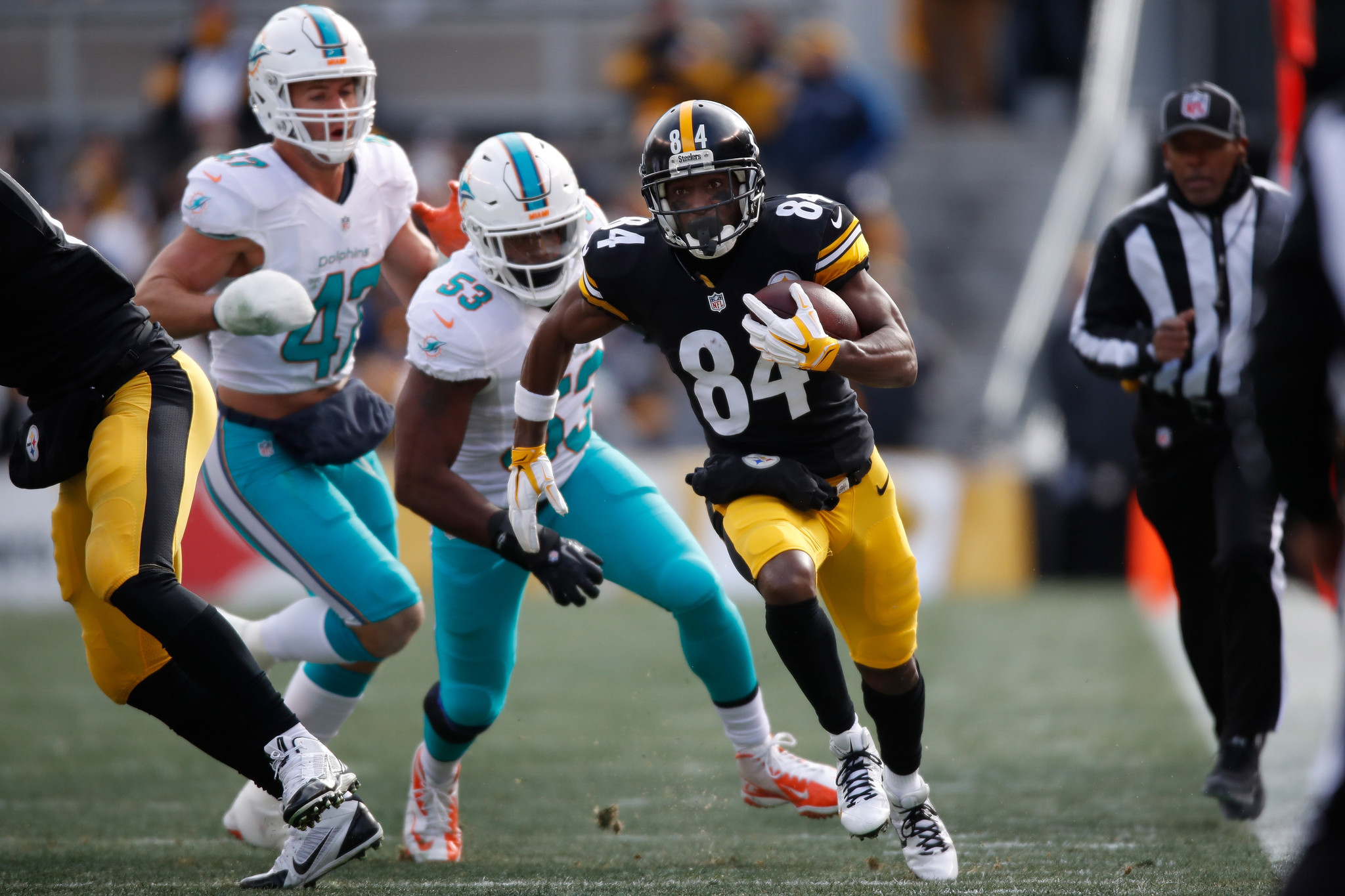 Blog rewind: Pittsburgh Steelers 30, Miami Dolphins 12 (FINAL)