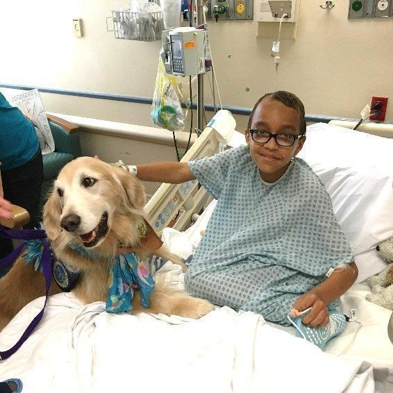 check pup potential at therapy dog fundraising event