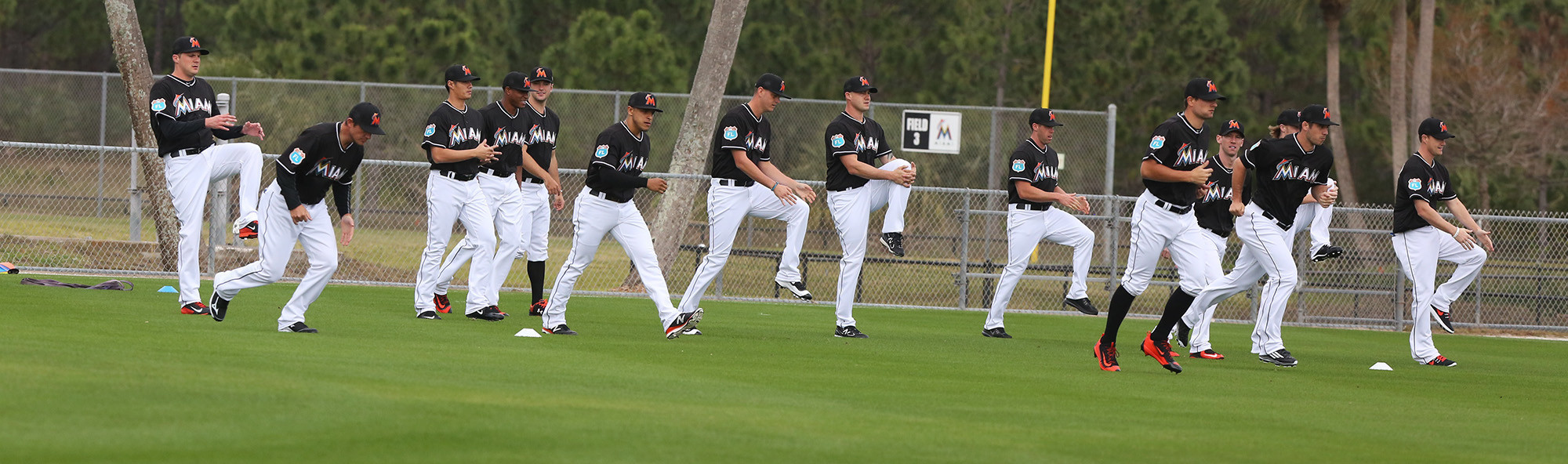 Fl-marlins-spring-training-invites-0113-20170112