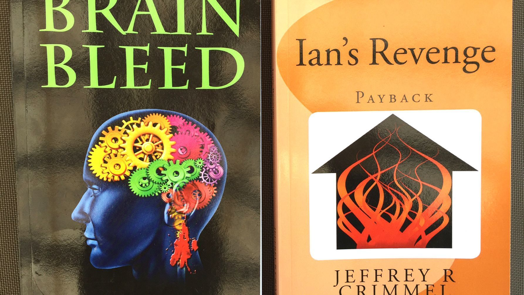 "Jeffrey Crimmel's ""Brain Bleed"" mystery mentions the town of Ramona and was followed by ""Ian's Revenge."""