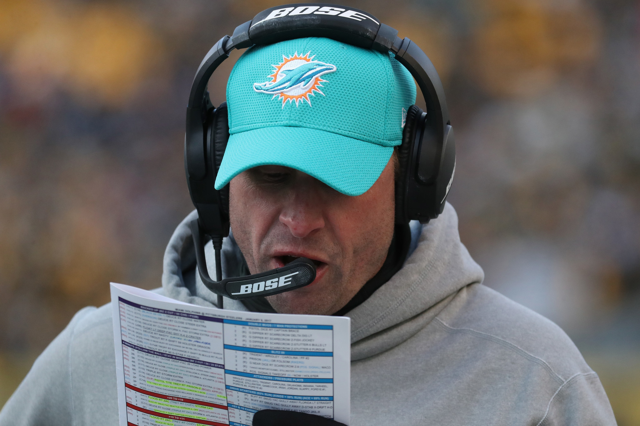 Sfl-omar-kelly-grades-the-miami-dolphins-position-by-position-20170113