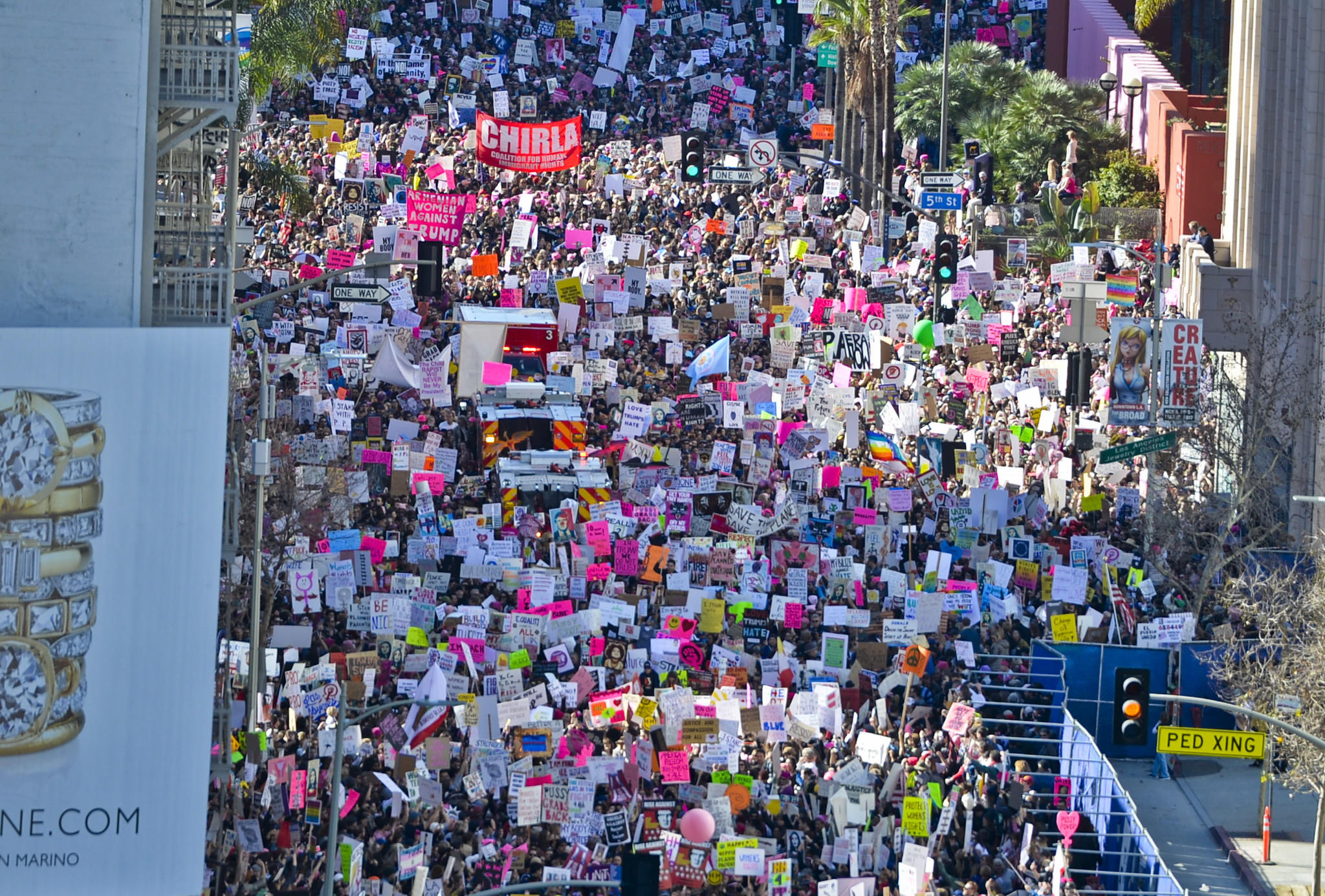 The Women's March in Los Angeles. (Stuart Palley / For The Times)