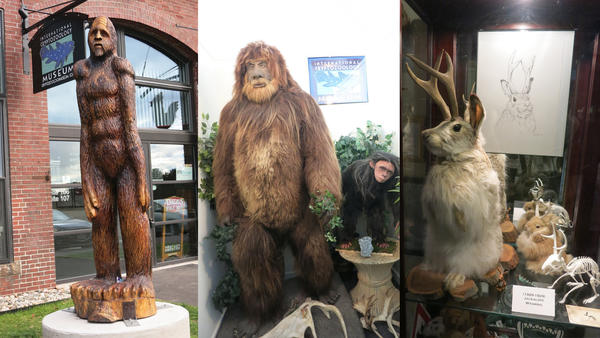 You may not believe in Bigfoot or the Loch Ness Monster - but this museum may persuade you otherwise