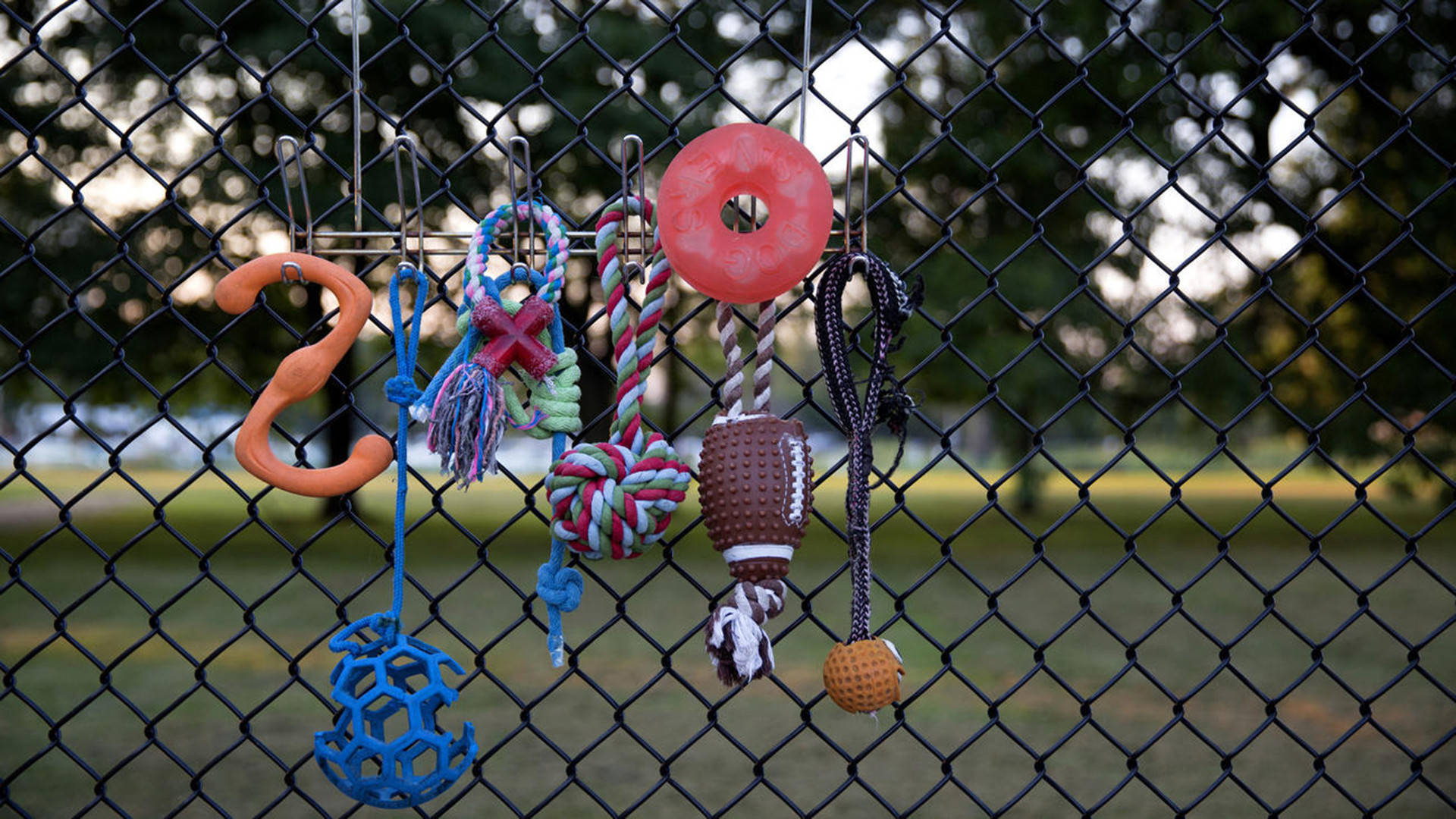 Another Dog Park Planned For North Side As South Side Residents - Map of chicago dog parks
